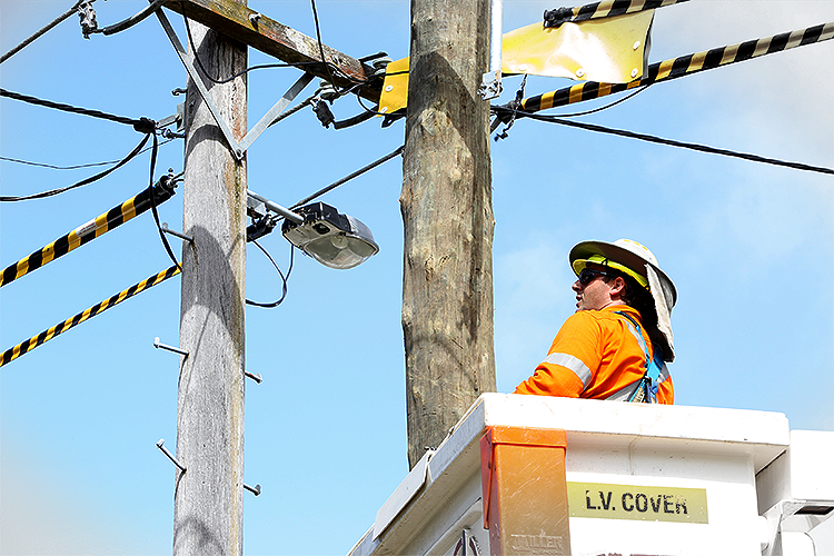 Ausgrid worker inspecting power lines