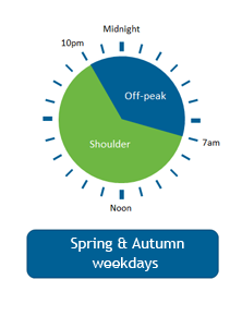 Time of use Metering - Businesses - Spring and Autumn Weekdays